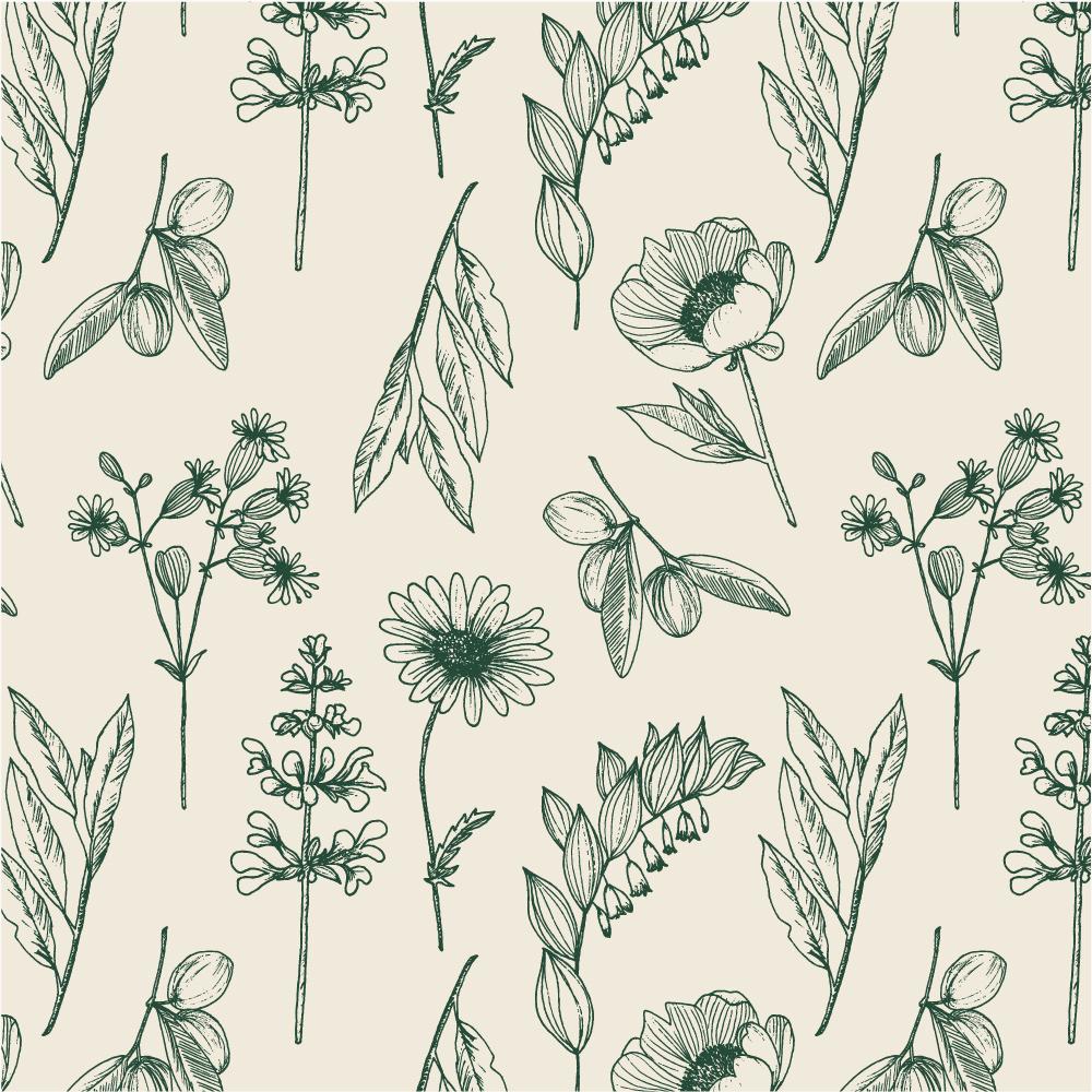 Rebranding For Floral Designer Daisy Studio Botanical Pattern Illustrations