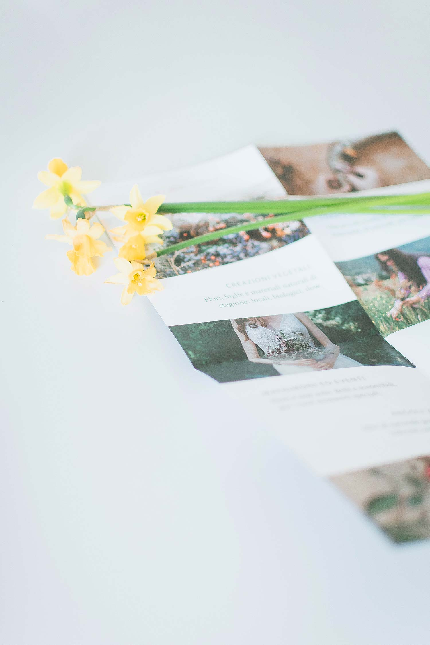 Branded stationery: Wedding brochure